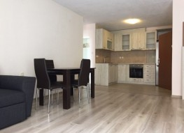 Big one-bedroom apartment for rent. Sandanski