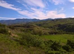 Großes Grundstück zum Verkauf in der Nähe von Dorf Hotovo, Sandanski Bereich