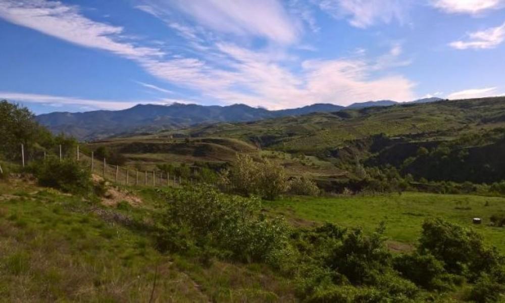 Big land for sale near village of Hotovo, Sandanski area.